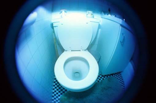 Toilet Story Derek Clark