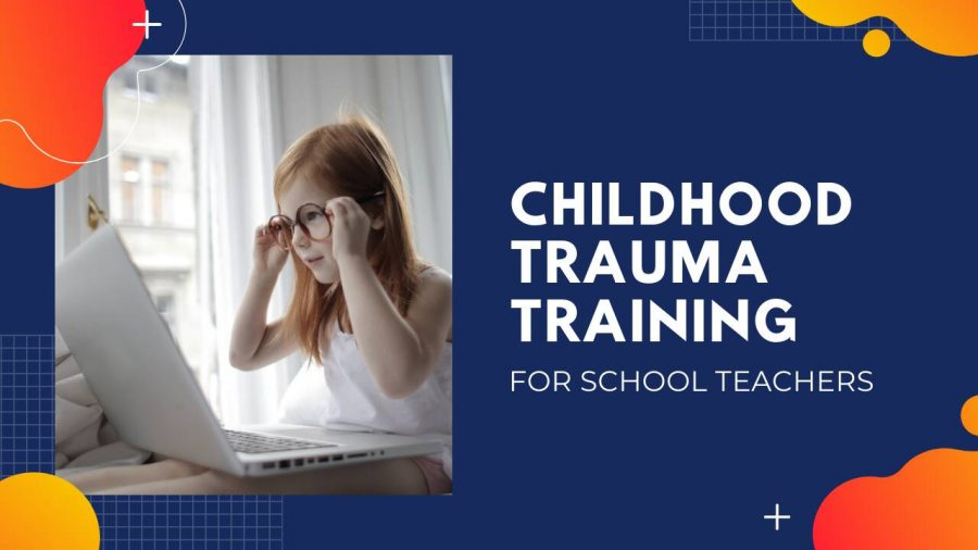 Childhood Trauma Informed Care Training